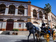 Horse drawn carriage in front of the Bull Ring in Malaga, Andalusia, Spain.