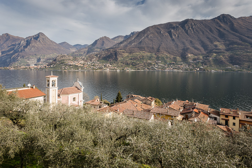 Olive grove and Carzano village of Monte Isola, Lake Iseo, Lombardy, Italy