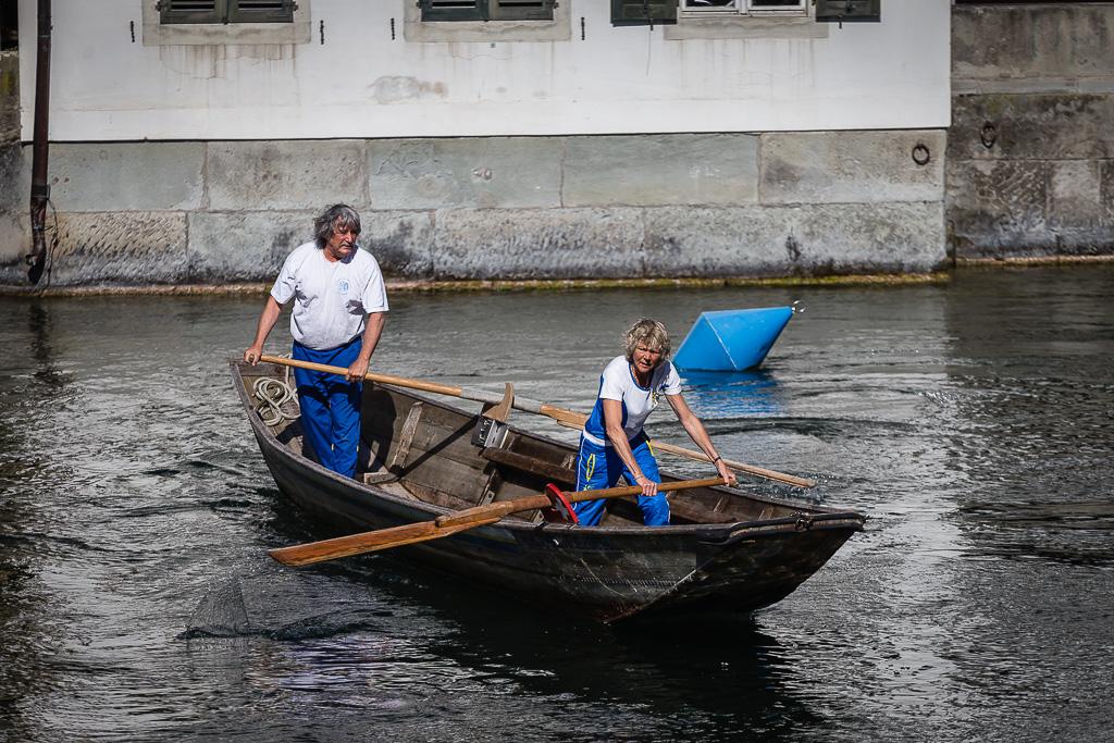 Rematori sul fiume Limmat, Zurigo, Svizzera